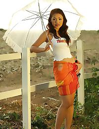 Big Breasts of Nook Visine Outdoor Parasol Strip