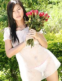 Thai Rose Hana Strips Outdoors On Bench